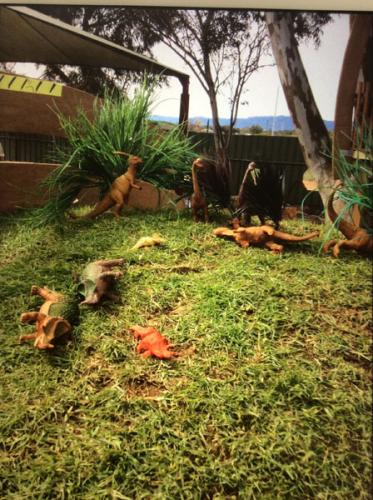Flinder's-Children's-Centre-Dinosaurs-Hill